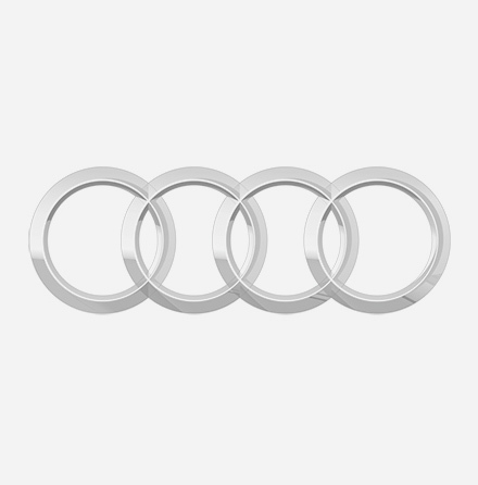 Audi Fuel Rails